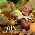 5 coole Ideen gegen einen langweiligen Herbst!