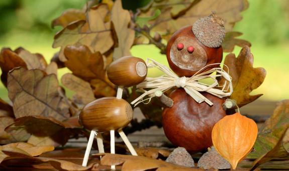 Mit diesen 5 Aktivitäten wird es euch bestimmt nicht langweilig im Herbst!