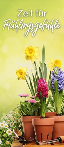 Die schönsten Geschenke zum Frühlingsanfang